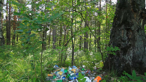 Garbage in the forest Footage