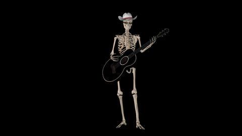 Skeleton Guitarist - Loop + Alpha Stock Video Footage