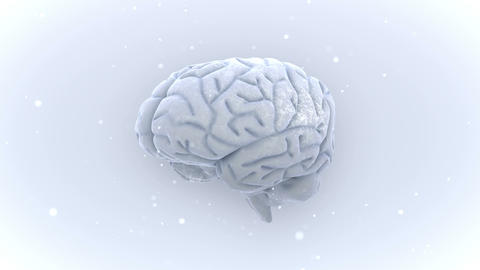 Brain 2 A 1 W HD Animation