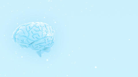 Brain 2 A 2 W HD Animation