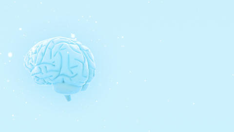 Brain 2 A 2 W HD Stock Video Footage