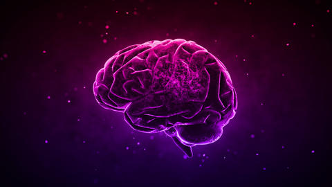 Brain 2 C 1 D HD Animation