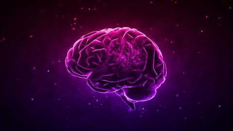 Brain 2 C 1 D HD Stock Video Footage