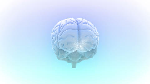 Brain 2 C 1 W HD Stock Video Footage