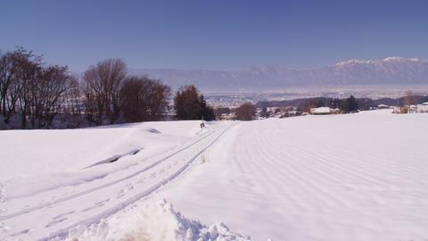 雪 Live Action