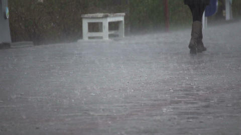 Rain drops close up 02 Footage