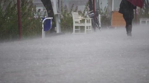 Rain drops close up 04 Footage