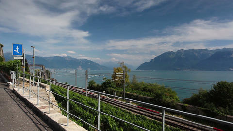 Vineyards near the railway station of the Lavaux region Footage
