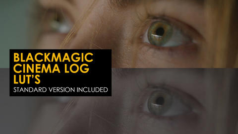 Blackmagic Cinema Log And Standard Luts
