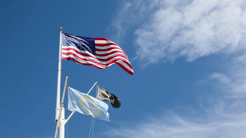 American flags waving in the wind Image