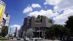 Intersection of metropolis (Timelapse · Japan · Tokyo) Live Action