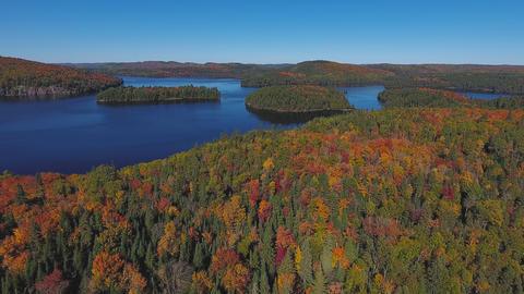 Algonquin Provincial Park , Canada, Video - Algonquin Provincial Park at fall | Footage