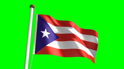 Puerto Rico flag Stock Video Footage