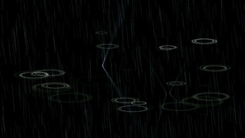rain at night,water ripple in pond Animation
