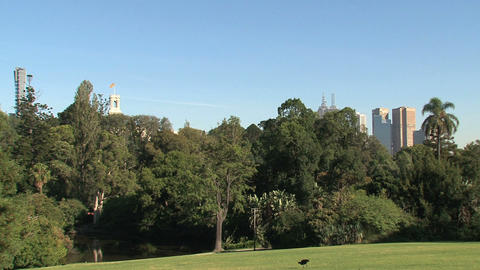 Royal Botanic Gardens with bird Melbourne Footage
