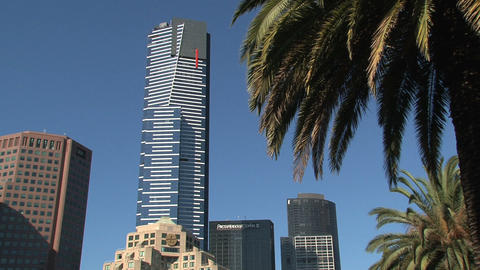 Eureka tower and palmtree Stock Video Footage
