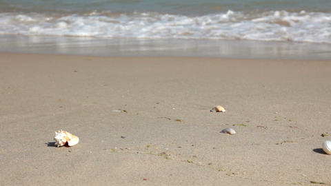 Beach. Place for your advertising Stock Video Footage