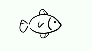 drawing of fish swimming,Hand painting video... Stock Video Footage