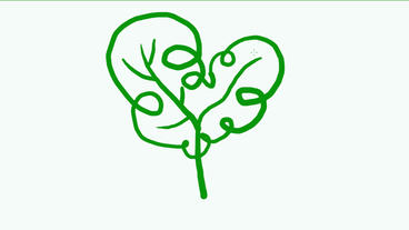 drawing of green tree,Hand painting video material,sketch.Children,childhood,kin Animation