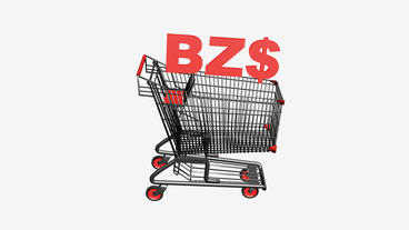 Shopping Cart with BZ$ Dollars... Stock Video Footage