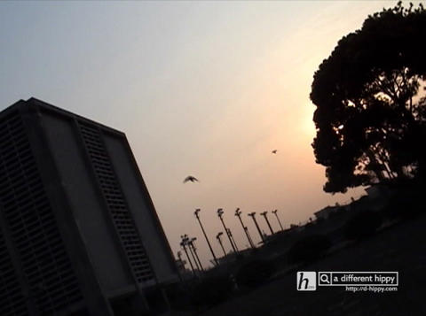 sg 02 036 Stock Video Footage