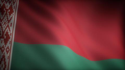 Flag of Belarus Stock Video Footage
