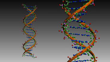 Rotation of 3D DNA.medicine,biology,science,research,medical,helix,biotechnology Animation