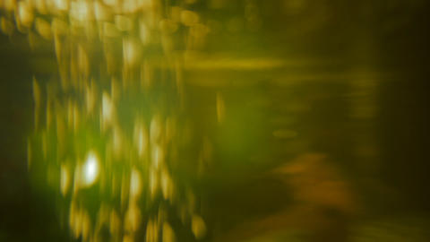 Underwater video background Stock Video Footage