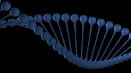 DNA chain loop Animation