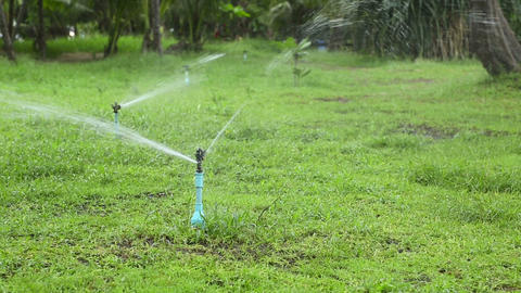 Watering the lawn Footage