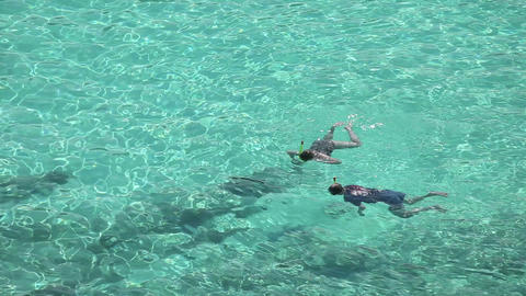 Snorkeling Stock Video Footage