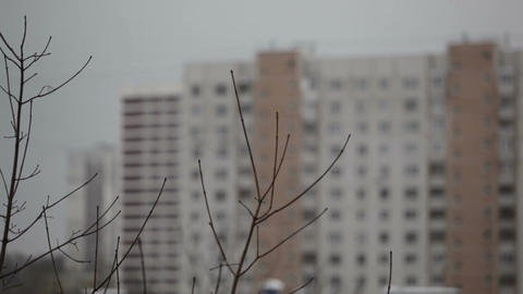 Building and tree branches - view from the window. Focus... Stock Video Footage
