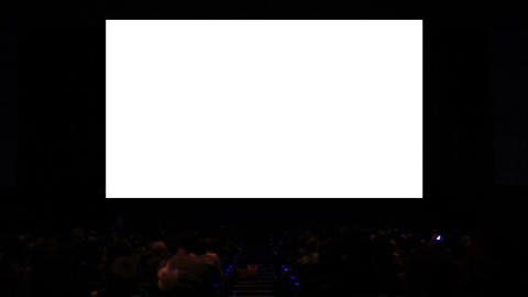Viewers in the cinema house. Variant III. Screen size was... Stock Video Footage