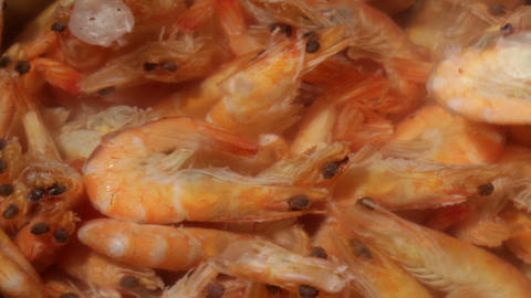 Time Lapse. Shrimp Are Simmered In A Saucepan stock footage