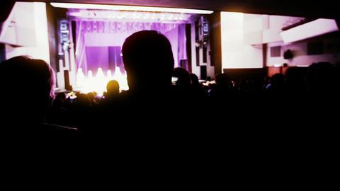 Viewers shot from back watching the show. Stop motion... Stock Video Footage