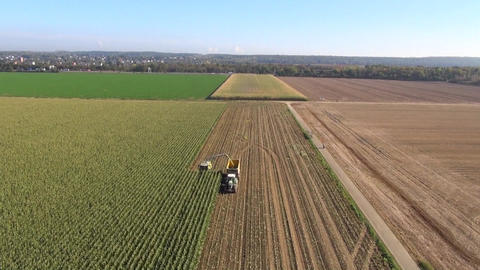 Aerial view of a farmer harvesting silage Footage