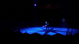 Circus Act 4 Stock Video Footage