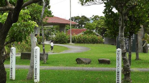 Park in Okinawa Island Ishigaki Japan 2 Stock Video Footage