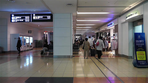 Tokyo Haneda Airport Arrival Level 6 Stock Video Footage