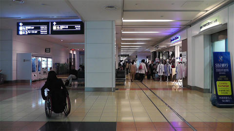 Tokyo Haneda Airport Arrival Level 6 Footage
