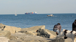 MOTOR YATCH,FISHERMEN,CAT AND CARGO SHIP Stock Video Footage