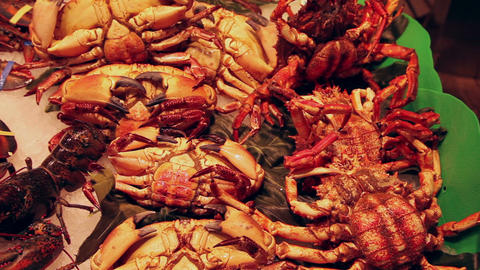 Live crabs at fish market in Barcelona Stock Video Footage
