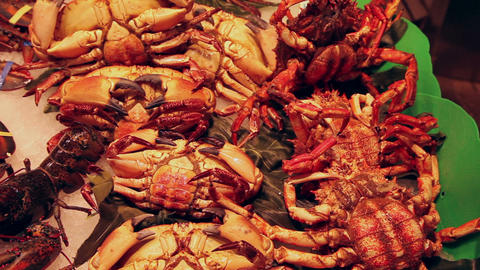 Live crabs at fish market in Barcelona Footage
