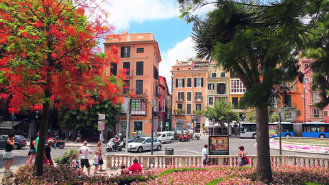 Center of Palma de Mallorca, Mallorca Island, Spain Stock Video Footage