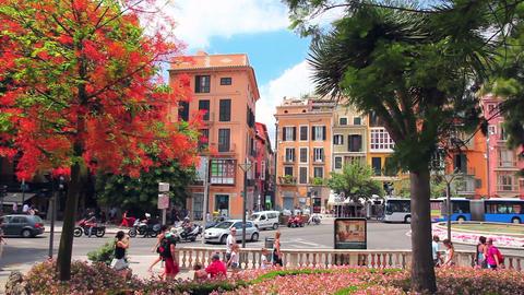 Center of Palma de Mallorca, Mallorca Island, Spain Stock Video Footage