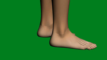 Rotation Of 3D Foot.Leg,health,barefoot,foot,beauty,care,human,female, stock footage