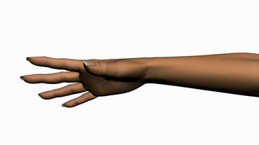 Rotation of 3D hand.human,finger,symbol,thumb,people Stock Video Footage