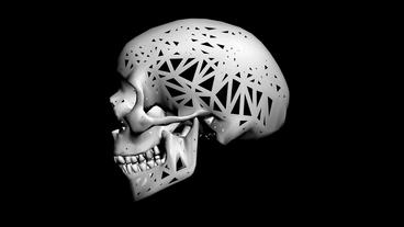 Rotation of 3D Skull.bone,death,skeleton,illustration,design,dead,Grid,mesh,sket Animation