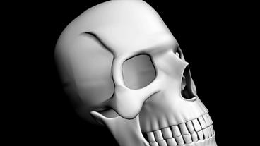 Rotation Of 3D Skull.bone,death,skeleton,illustration,design,dead,Grid,mesh,sketch,structure stock footage