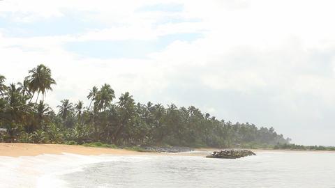Tropical beach, Sri Lanka Stock Video Footage
